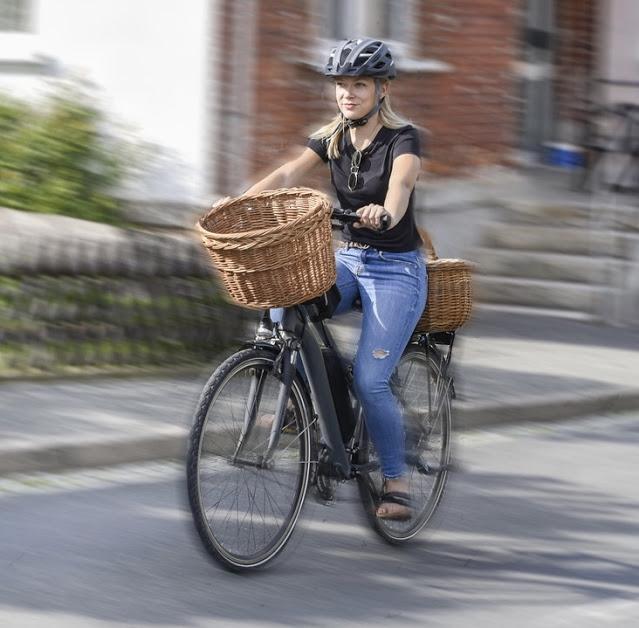 e-bike gbraucht kaufen Tipps und Checkliste